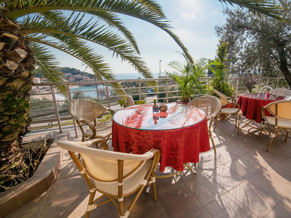 Raymond Apartments Montenegro - sun terrace with palms