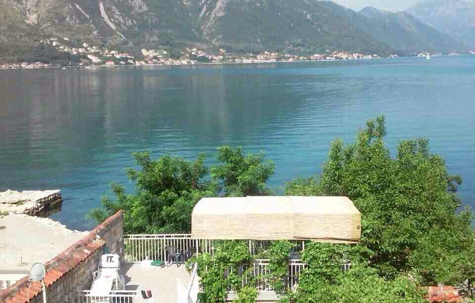 Apartments Živković - Dobrota, Montenegro - sea view